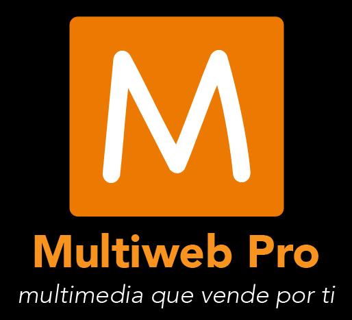 Logo Multi Web Pro